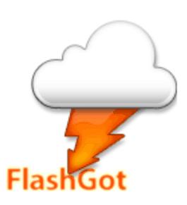 FlashGot-logo