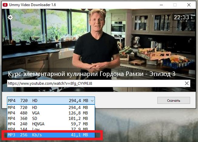 Загрузка аудио дорожки в Ummy Video Downloader