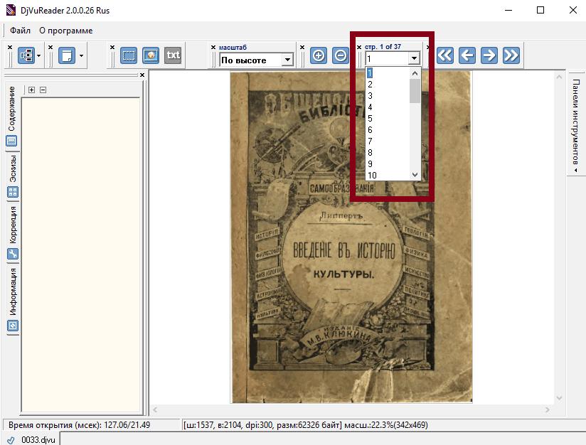 Панель страницы в DjVuReader