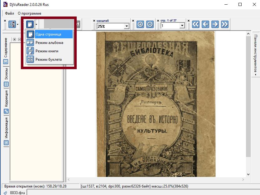 Режим просмотра страницы в DjVuReader